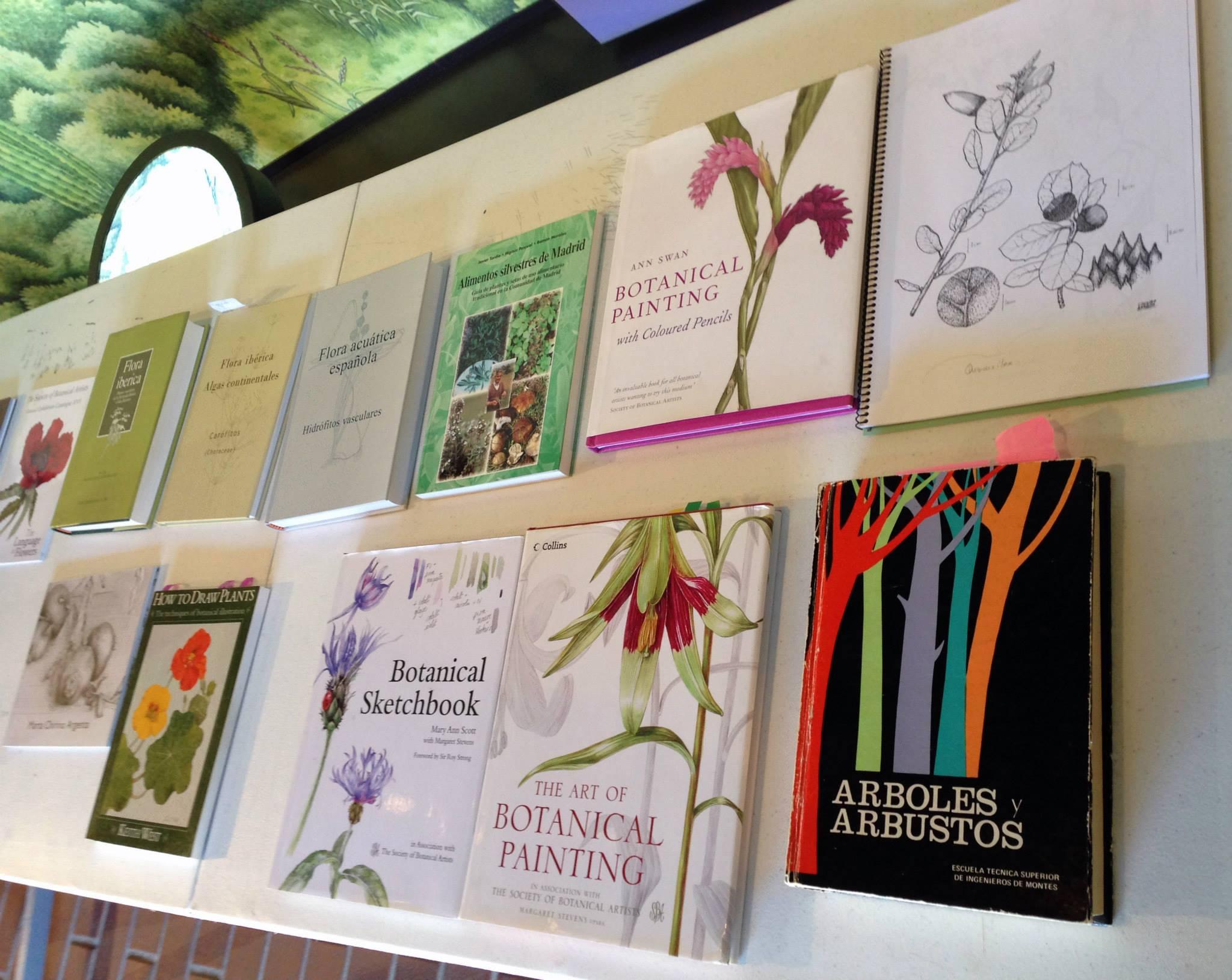 curso dibujo botanico